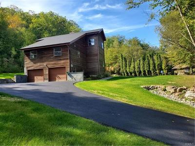 Putnam County Single Family Home For Sale: 663 Route 301