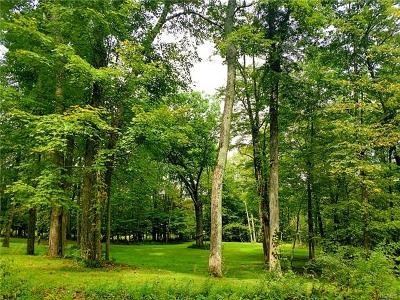 Dutchess County, Orange County, Sullivan County, Ulster County Residential Lots & Land For Sale: 949 South Street