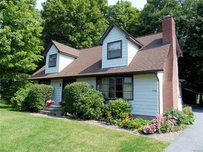 Dutchess County Single Family Home For Sale: 7764 South Main Street