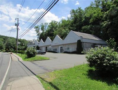 Nyack Commercial For Sale: 10 Waldron Avenue