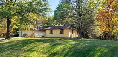 Sullivan County Single Family Home For Sale: 21 Sunset Drive