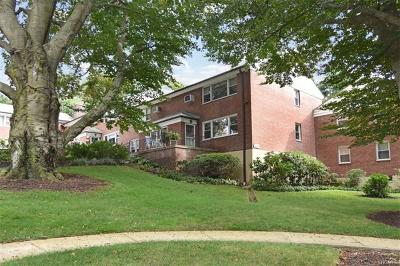 Westchester County Co-Operative For Sale: 241 South Buckhout Street #241