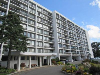 Westchester County Condo/Townhouse For Sale: 500 High Point Drive #315