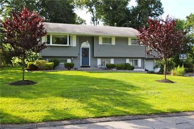 Rockland County Single Family Home For Sale: 17 Flitt Street