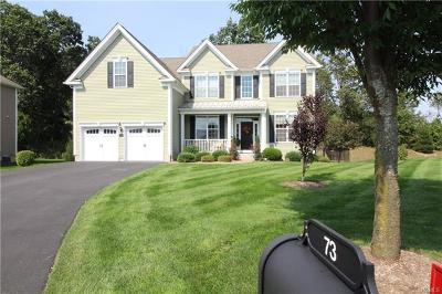 Dutchess County Single Family Home For Sale: 73 East Van Buren Way