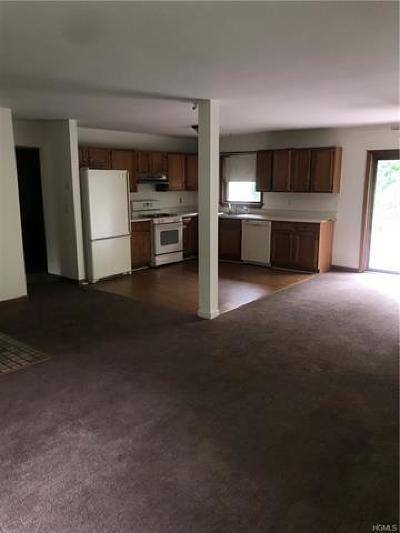 Orange County, Sullivan County, Ulster County Rental For Rent: 57 Oak Hill Road #1