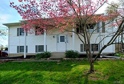 Orange County, Sullivan County, Ulster County Rental For Rent: 355 Hill Avenue