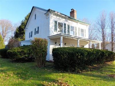 Dutchess County Single Family Home For Sale: 806 Violet Avenue
