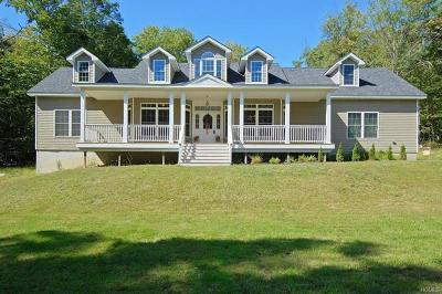 Single Family Home For Sale: 499 Upper Mountain Road