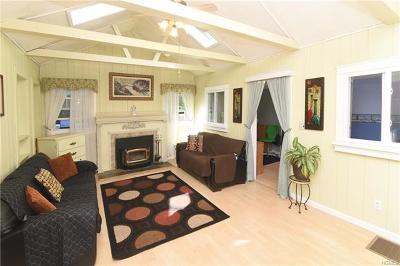 Putnam County Single Family Home For Sale: 23 Interlaken Road