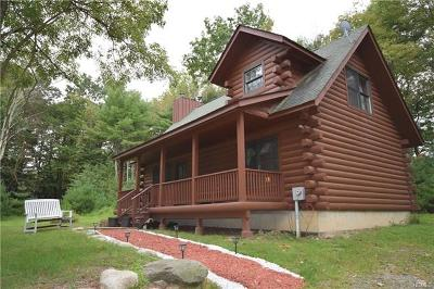 Wurtsboro Single Family Home For Sale: 25 Perron Drive