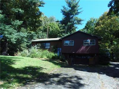 Dutchess County Single Family Home For Sale: 71 Noxon Road