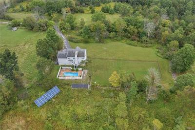 Pine Bush Single Family Home For Sale: 283 Crans Mill Road