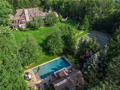 Westchester County Single Family Home For Sale: 6 Hollow Ridge Road