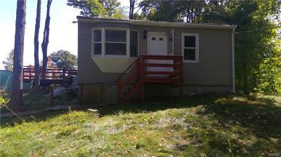 Putnam County Single Family Home For Sale: 395 Haviland Drive