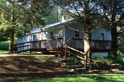 Sullivan County Single Family Home For Sale: 347 Burr Road Tr 10