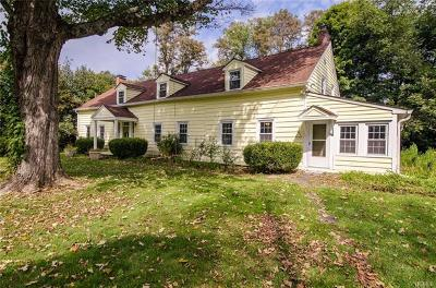 Dutchess County Single Family Home For Sale: 71 Robinson Lane