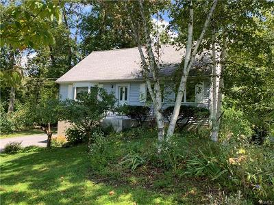 Dutchess County Single Family Home For Sale: 32 Pippin Lane