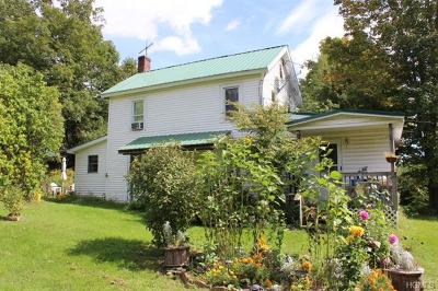 Livingston Manor NY Single Family Home For Sale: $299,000