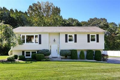 Rockland County Single Family Home For Sale: 58 Riverglen Drive