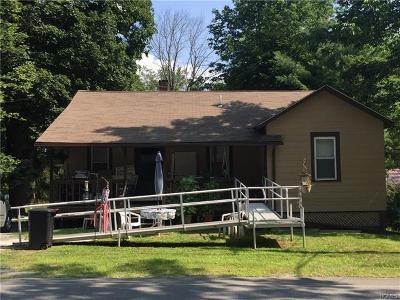 Monticello Single Family Home For Sale: 13 Rock Ridge Avenue
