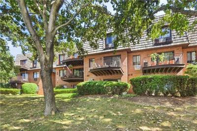 Westchester County Condo/Townhouse For Sale: 2 Briarcliff Drive South #29