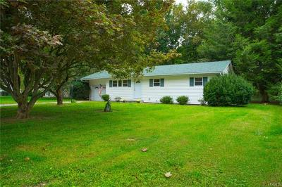 Dutchess County Single Family Home For Sale: 29 Milano Drive