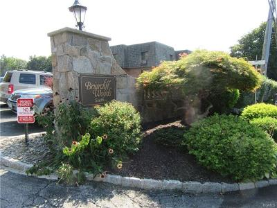 Westchester County Condo/Townhouse For Sale: 5 Briarcliff Drive South #54