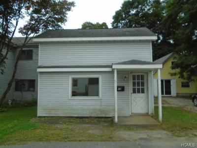Dutchess County Single Family Home For Sale: 16 Henry Street