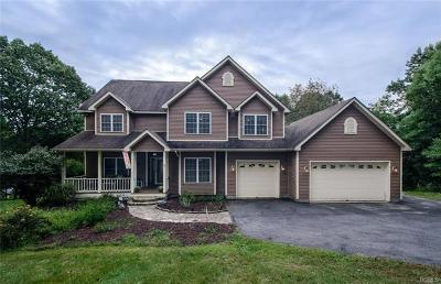 Dutchess County Single Family Home For Sale: 44 Turkey Run