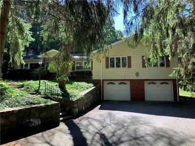 Dutchess County Single Family Home For Sale: 41 Sylvan Lake Road