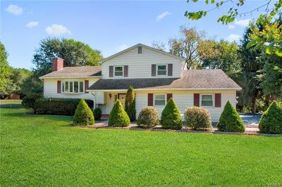 Dutchess County Single Family Home For Sale: 78 Derick Drive