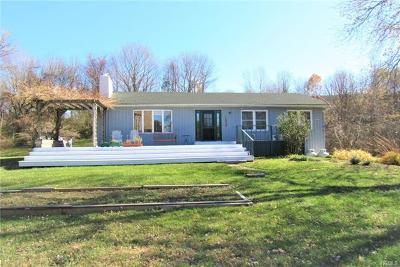 Dutchess County Single Family Home For Sale: 6854 Route 82