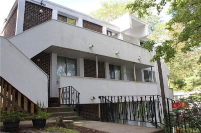 Westchester County Condo/Townhouse For Sale: 1016 Colony Drive