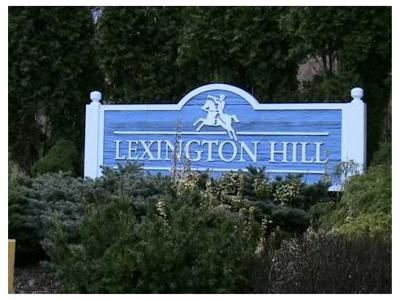 Condo/Townhouse Sold: 28 Lexington Hill #2