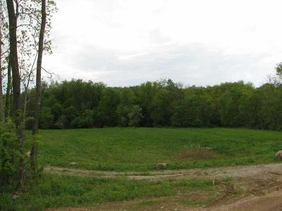 Residential Lots & Land For Sale: 383 Buena Vista Drive