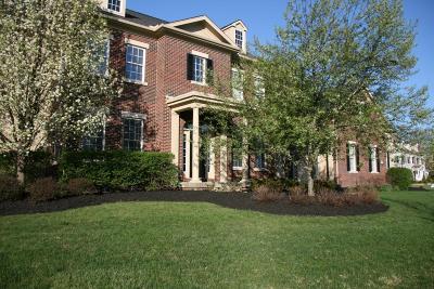 Dublin OH Single Family Home For Sale: $719,000