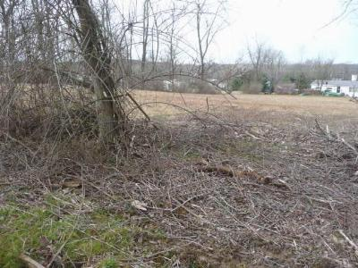 Utica Residential Lots & Land For Sale: Sycamore Street