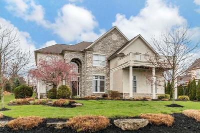 Dublin Single Family Home For Sale: 9083 Tartan Fields Drive