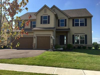 Powell Single Family Home For Sale: 4120 Hickory Rock Drive