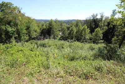Granville Residential Lots & Land For Sale: 417 Bryn Du Drive