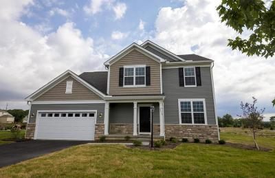 Plain City Single Family Home Contingent Finance And Inspect: 9410 Woodbine Way