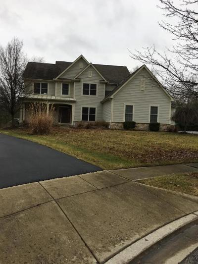 Blacklick Single Family Home For Sale: 7019 Bold Forbes Court
