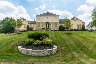 Delaware Single Family Home For Sale: 1701 Woodland Hall Drive