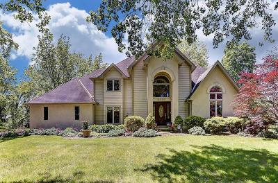 Single Family Home For Sale: 6897 Stemen Road