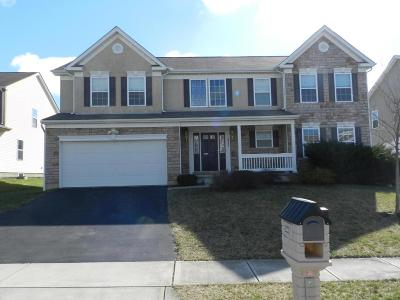 Reynoldsburg Single Family Home For Sale: 2066 Clay Stone Place