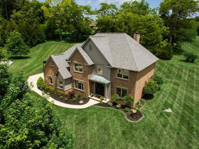 Single Family Home For Sale: 126 Bedwen Bach Lane