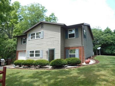 Chillicothe Single Family Home For Sale: 521 Red Bud Road