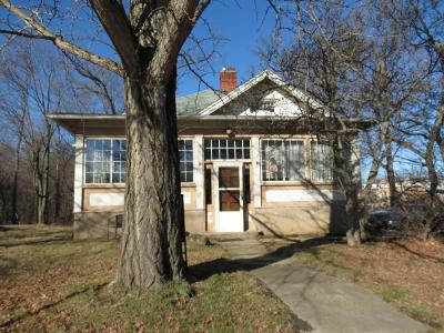 Powell Single Family Home For Sale: 80 E Olentangy Street