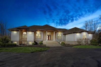 Delaware Single Family Home For Sale: 600 W Orange Road
